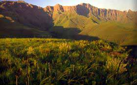 popular Drakensberg venues include hotels, resorts and private residences